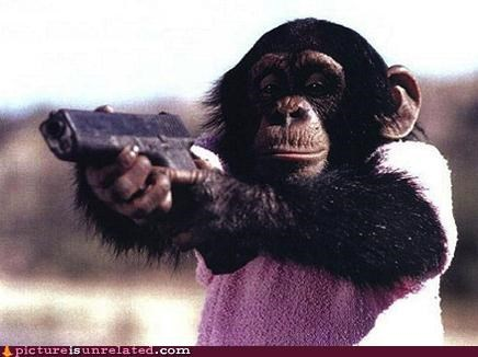 banana guns monkey wtf - 2976039168