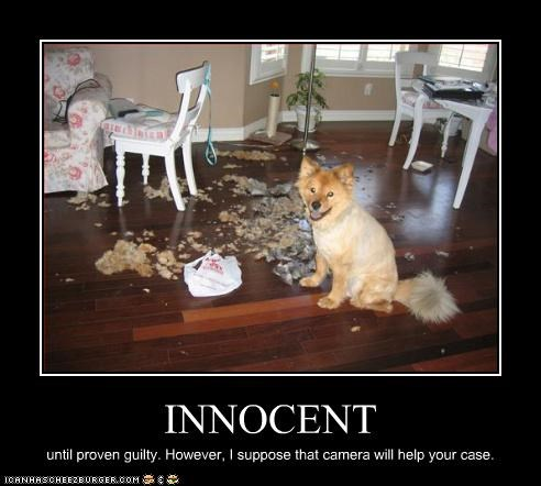 INNOCENT until proven guilty. However, I suppose that camera will help your case.