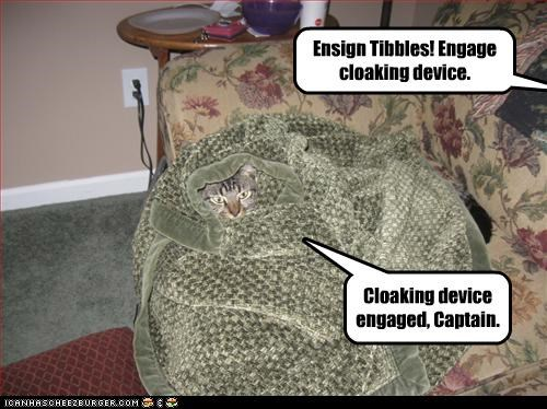 Ensign Tibbles! Engage cloaking device. Cloaking device engaged, Captain.