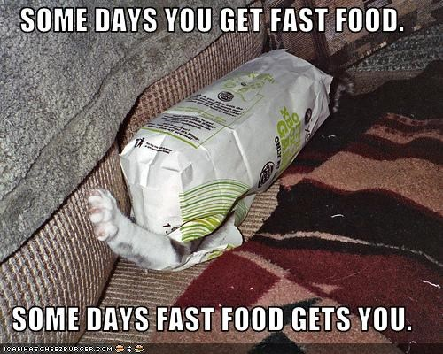 attacking,bag,fast food
