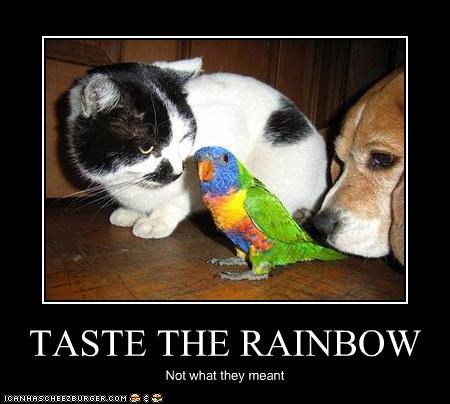 TASTE THE RAINBOW Not what they meant