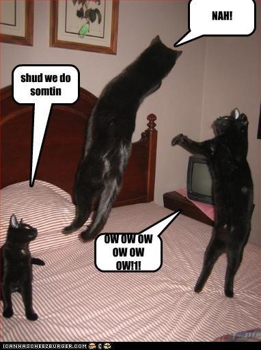 OW OW OW OW OW OW!1! shud we do somtin NAH!