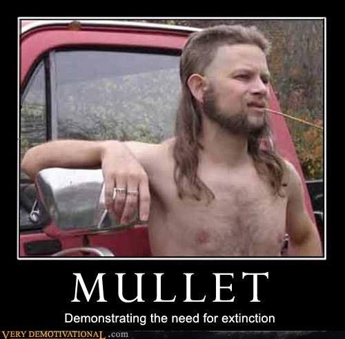 haircut hilarious mullet redneck straw sweet white trash - 2983322368