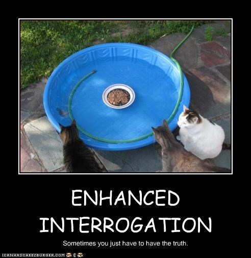 ENHANCED INTERROGATION Sometimes you just have to have the truth.