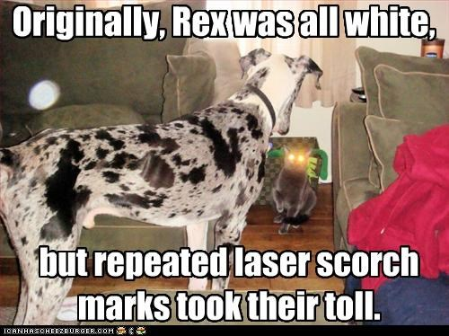 Originally, Rex was all white, but repeated laser scorch marks took their toll.