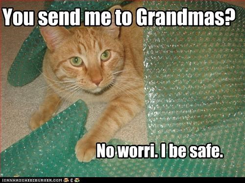 You send me to Grandmas? No worri. I be safe.