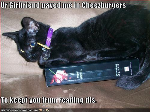 Cheezburger Image 2990396928