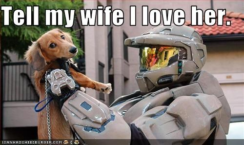 dachshund halo scared video games wife - 2992922112