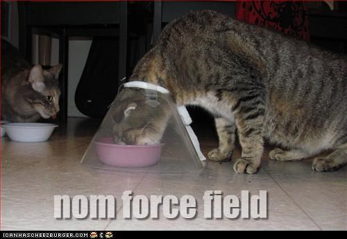 cone,force field,fud,nom nom nom