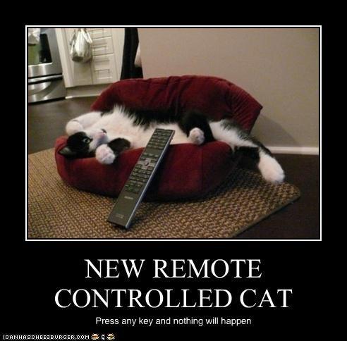 lazy nap remote - 2994931968