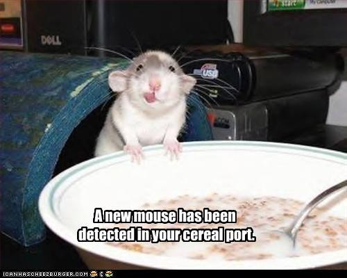 A new mouse has been  detected in your cereal port.
