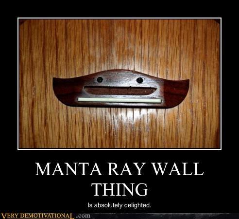 wtf manta ray wall - 2996465408