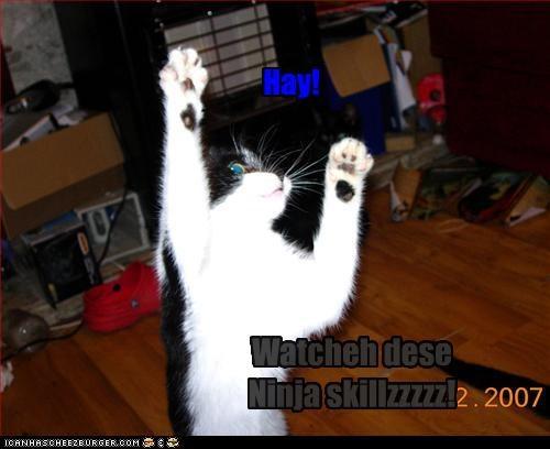 Hay! Watcheh dese Ninja skillzzzzz!