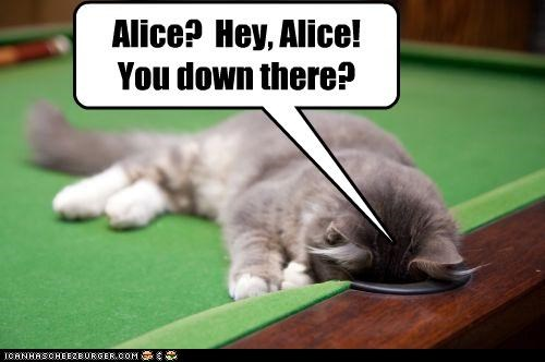 Alice? Hey, Alice! You down there?