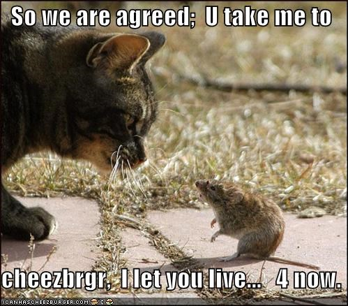 So we are agreed;  U take me to  cheezbrgr,  I let you live...   4 now.