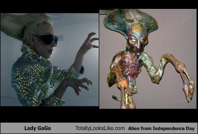 alien China dogs Hall of Fame independence day lady gaga package post snuggie vase
