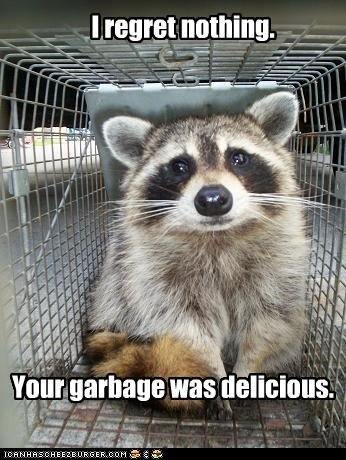 I regret nothing. Your garbage was delicious.