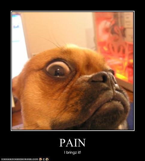 PAIN I bringz it!