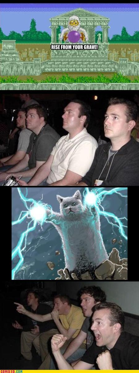 long cat Memes the internets - 3008374016