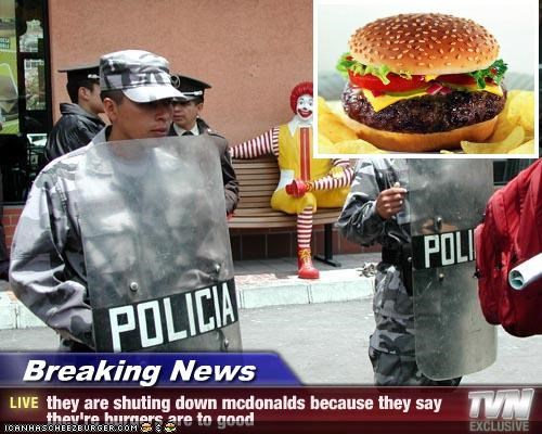 Cheezburger Image 3008783360