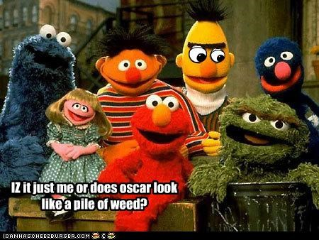 bert and ernie,Cookie Monster,drugs,elmo,oscar the grouch,pot,prairie dawn,Sesame Street