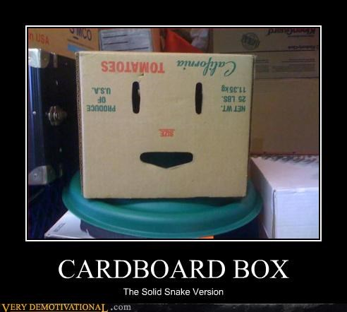 CARDBOARD BOX The Solid Snake Version
