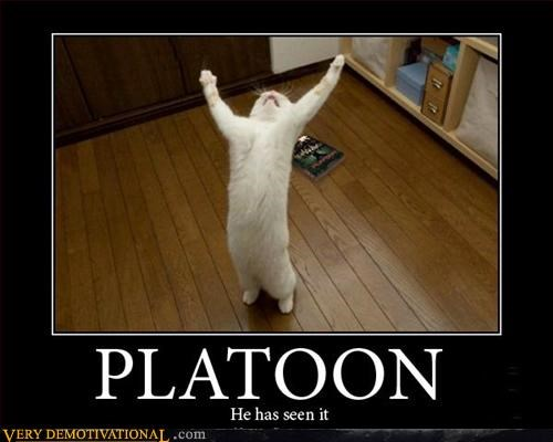 Art Greenspon,cat,hilarious,platoon,Pure Awesome,Terrifying