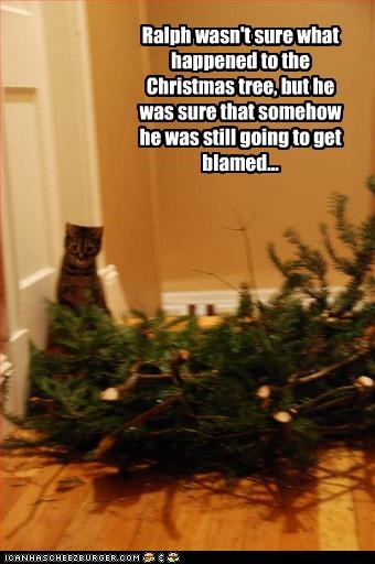 bad cat christmas innocent tree uh oh - 3018671360