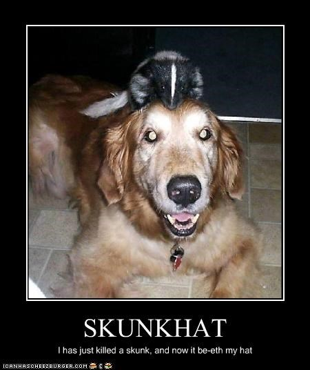 SKUNKHAT I has just killed a skunk, and now it be-eth my hat