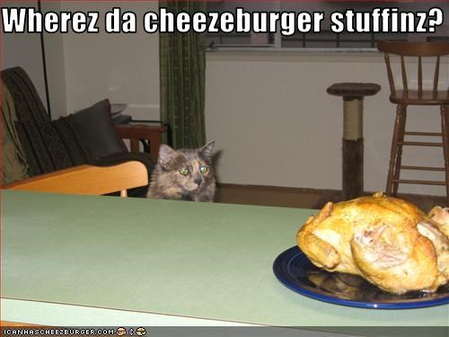 Cheezburger Image 3018961920