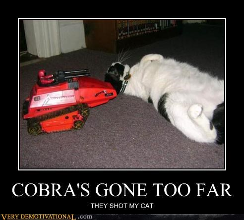cat,cobra,GI Joe