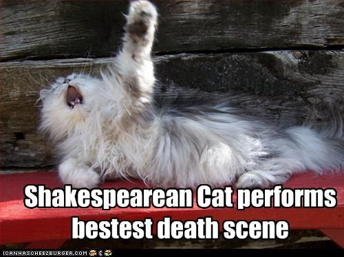 Shakespearean Cat performs bestest death scene