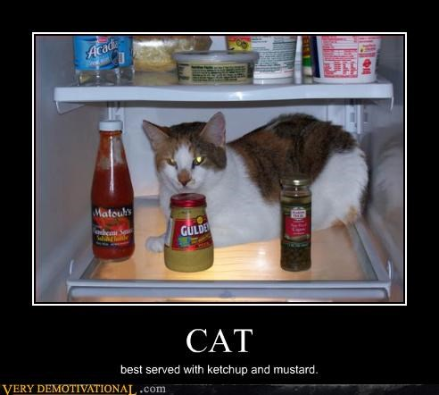 CAT best served with ketchup and mustard.