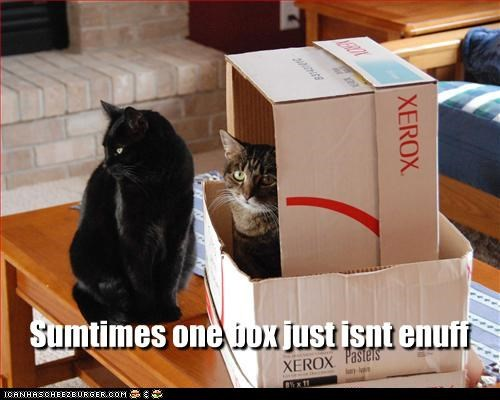 Sumtimes one box just isnt enuff Cleverness Here