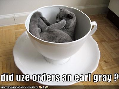 gray tea - 3022618112