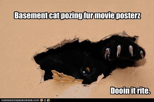 Basement cat pozing fur movie posterz Dooin it rite.