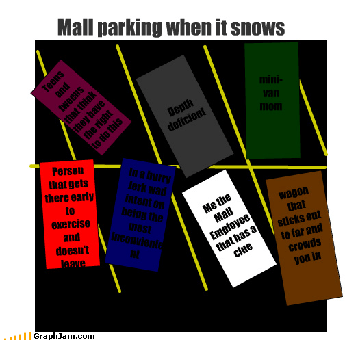 Mall parking when it snows mini-van mom Depth deficient In a hurry Jerk wad intent on being the most inconvienient Person that gets there early to exercise and doesn't leave Me the Mall Employee that has a clue wagon that sticks out to far and crowds you in Teens and tweens that think they have the right to do this