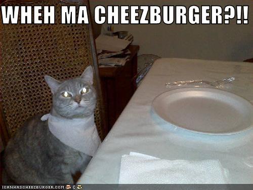 Cheezburger Image 3023866880