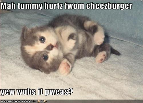 Cheezburger Image 3025093888