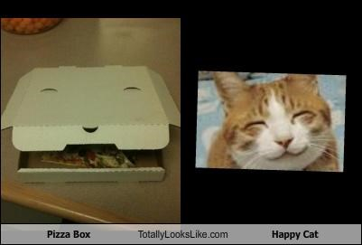 box,food,happy cat,pizza