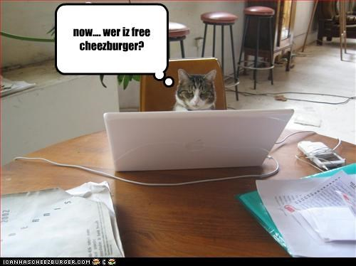 Cheezburger Image 3026324480