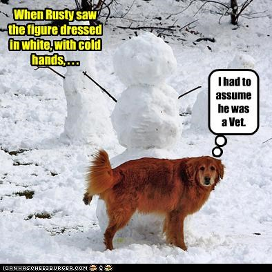 golden retriever pee snow snowman vet winter - 3026898432