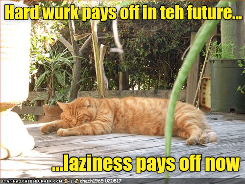 an orange tabby cat sleeping on the porch in the sun - cover for a list of the best cat memes of cheezburger users submitted
