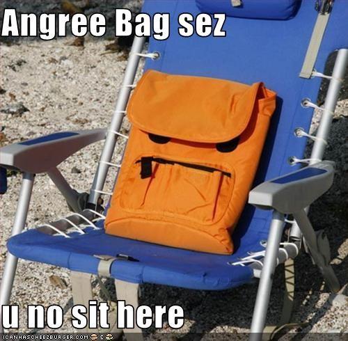 Cheezburger Image 3027211008