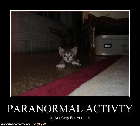 PARANORMAL ACTIVTY Its Not Only For Humans