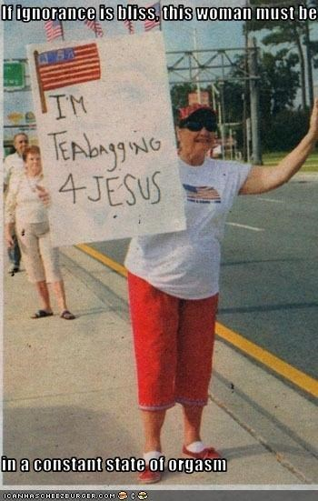 jesus protesters signs teabaggers - 3027916288