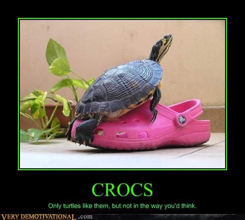 shoes horrible turtles crocs