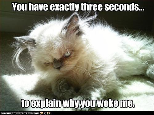 angry,awake
