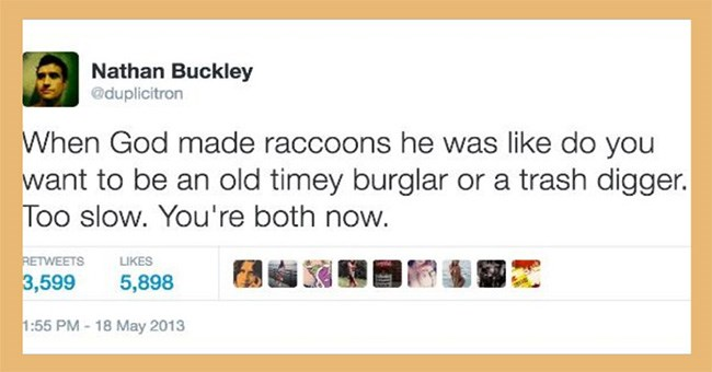 tweets of how god created animals | Nathan Buckley @duplicitron God made raccoons he like do want be an old timey burglar or trash digger. Too slow both now. RETWEETS LIKES 3,599 5,898 1:55 PM 18 May 2013