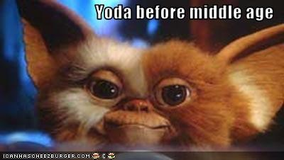 age gizmo gremlins old yoda - 3031568384